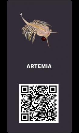 Tarjetas_Artemia