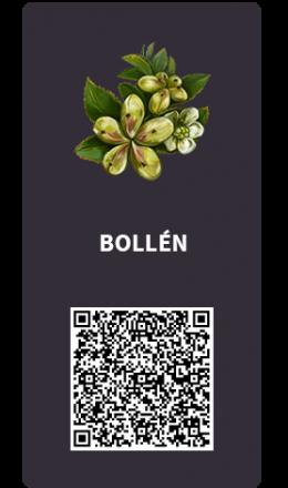 Tarjetas_Bollen