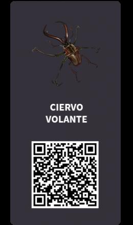 Tarjetas_Ciervo volante