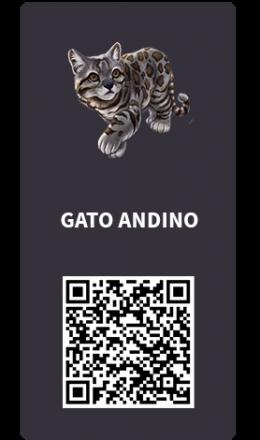 Tarjetas_Gato Andino