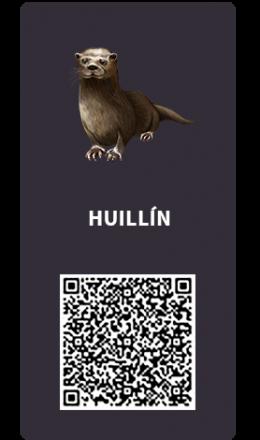 Tarjetas_Huillin