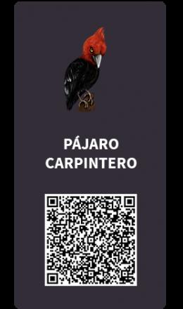 Tarjetas_Pajaro_Carpintero