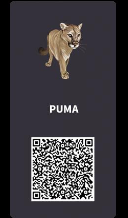 Tarjetas_Puma