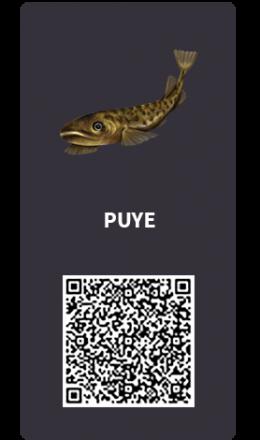 Tarjetas_Puye
