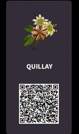 Tarjetas_Quillay