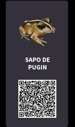 Tarjetas_Sapo de Pugin
