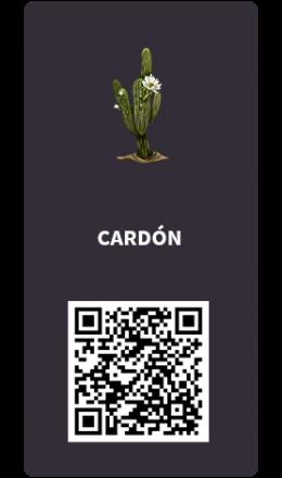 Tarjetas_cardon