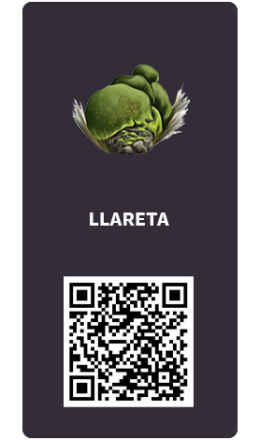 Tarjetas_llareta