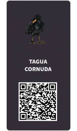 Tarjetas_tagua-cornuda
