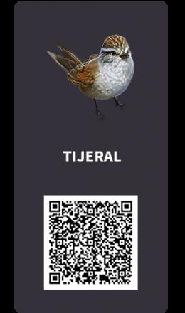 Tarjetas_tijeral